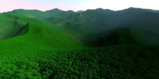 2015 million trees